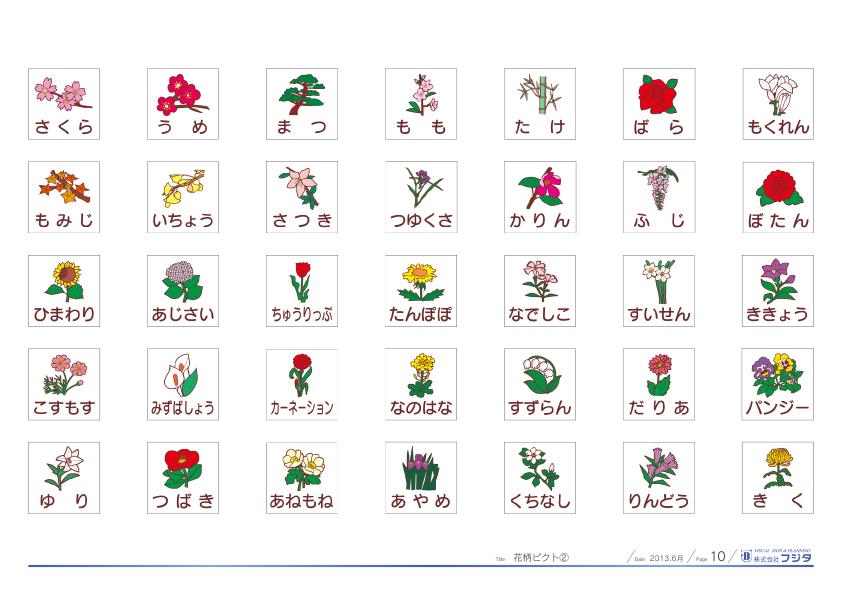 10 花ピクト2