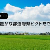 都道府県ピクトTOP